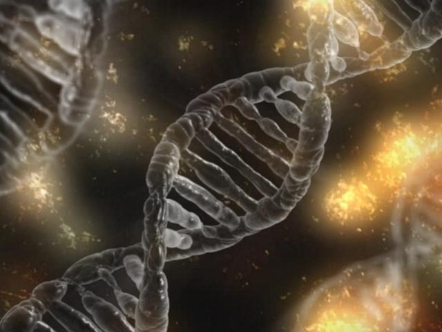 Matchen op je DNA met nieuwe dating app